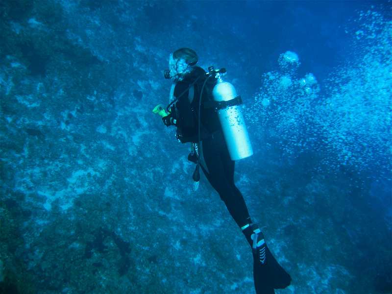 Deana Clark Model Dive